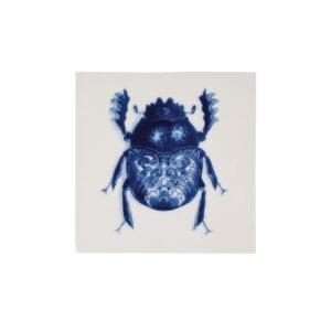 Tile Wunderkammer Bug 05